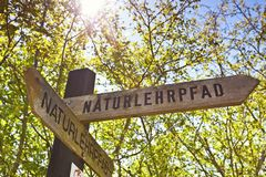 Educational nature trail Lobau Vienna. The nature trail Lobau leads into one of the most beautiful recreational areas of Vienna. It gives a very good insight royalty free stock photography