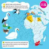 Educational task for children. Name birds in picture. Following dotted line you will know what countries birds fly away. For wintering. Learn and play picture royalty free illustration
