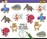 Educational task for kids Stock Photos