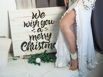 Eductive Śnieżna królowa w świątecznym nastroju fotografia royalty free