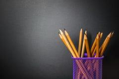 Edukaci pojęcie z powrotem szkoła Grupa ołówek Zdjęcia Stock
