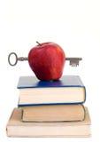 edukacja Fotografia Stock