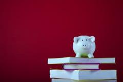 Edukacja koszt Fotografia Stock