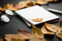 eduque o caderno em um fundo preto com folhas de outono Imagem de Stock Royalty Free