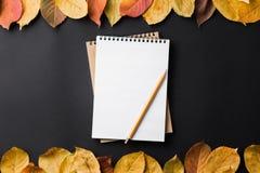 eduque o caderno em um fundo preto com folhas de outono Foto de Stock
