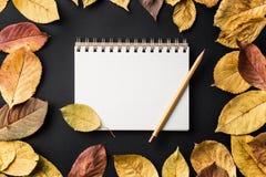 eduque o caderno em um fundo preto com folhas de outono Fotos de Stock