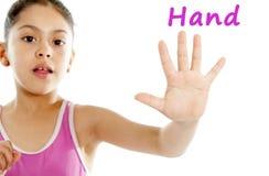Eduque o cartão do fim acima das moças mão e dedos no fundo branco foto de stock royalty free