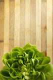 EDZR - Crop of fresh lettuce on a wood table Stock Photography