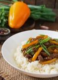 Eef avec les poivrons doux, les haricots verts et le riz image libre de droits