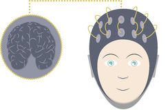 EEG and brain Royalty Free Stock Photo