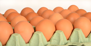 EEggs. Stock Photo