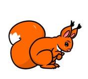 Eekhoorn oranje dierlijk beeldverhaal Royalty-vrije Stock Foto