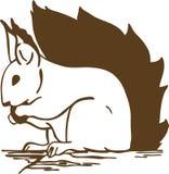 Eekhoorn (sciurus) royalty-vrije illustratie
