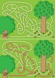 Eekhoornlabyrint Royalty-vrije Stock Afbeeldingen