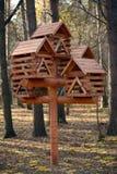 Eekhoorns en vogelsvoeder Stock Foto's