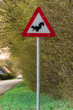 Eekhoornwaarschuwingsbord Royalty-vrije Stock Foto