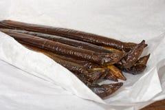eel курил Стоковое Изображение