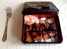 Eel bento. Rice with eel as a Japanese rice box Stock Photo