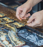 Eel Chef Cook Japan Royalty Free Stock Image