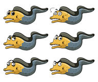 Eel with different emotions Royalty Free Stock Image