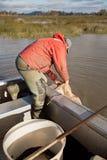 Eel Fisherman Royalty Free Stock Images