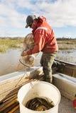 Eel Fisherman Stock Images
