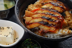 Eel rice. Japanese Eel slice with rice Royalty Free Stock Photos