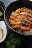 Eel rice Stock Photography