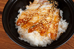 Eel with rice Royalty Free Stock Photos