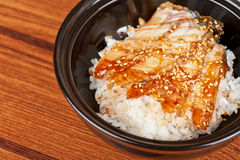 Eel with rice Stock Photography