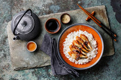 Eel on Rice with sauce and sesame and green tea Royalty Free Stock Images