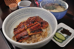 Eel rice and Udon Royalty Free Stock Photography