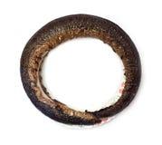 Eel smoked Stock Photos
