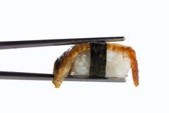 Eel sushi nigiri Royalty Free Stock Photo