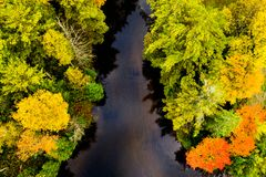 Downward view of a creek and forest in autumn. Aerial downward view of colourful trees and a creek in autumn in Ontario, Canada stock images