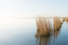 Eemmeer in Holland Royalty Free Stock Photos