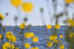 Eemmeer with windmills Stock Photos