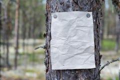 Een aankondiging, een brief, een bericht op een boom in het bos Stock Foto's