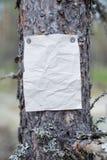 Een aankondiging, een brief, een bericht op een boom in het bos Stock Foto