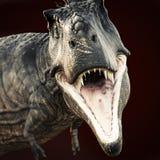 Een aanval van Tyrannosaurusrex op donkere achtergrond Stock Afbeeldingen
