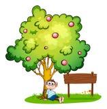 Een aap die onder de boom naast de lege houten raad rusten Stock Foto's