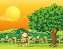 Een aap die zijn voedsel dragen bij de brug Royalty-vrije Stock Afbeelding