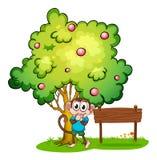 Een aap en een leeg uithangbord onder de boom Royalty-vrije Stock Afbeeldingen
