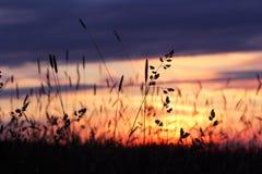 Een aardige zonsondergang royalty-vrije stock fotografie