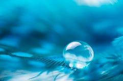 Een abstract beeld van blauwe kleuren pluizige veren met één macrodaling van het dauwwater, mooie natuurlijke achtergrond Stock Foto's