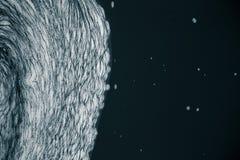 Een abstract patroon van schuimvormend in de rivier Royalty-vrije Stock Afbeeldingen
