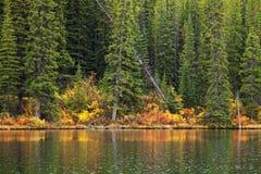 Een achtergrond van een bos en een bergmeer stock afbeelding