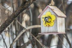 Een achtermening van een kleine gele mees zit in een geel vogel en eekhoornvoederhuis van triplex in het park royalty-vrije stock fotografie