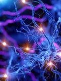 Een actieve menselijke zenuwcel stock illustratie