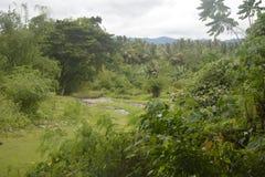 Een afgelegen gebied met een aardig milieu Stock Afbeeldingen